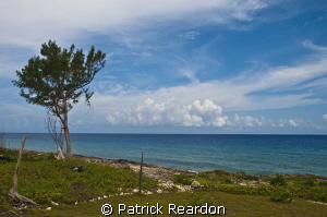Westward view from Conch Point, Grand Cayman.  The water ... by Patrick Reardon 